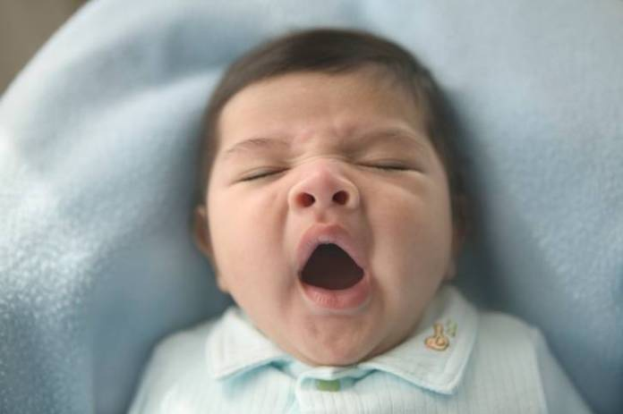 High angle view of a baby yawning