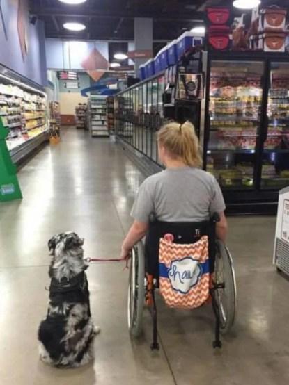cane e donna disabile