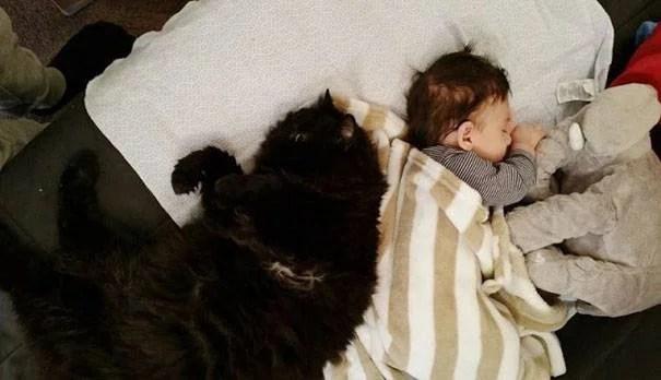 bimbo e gatto nero