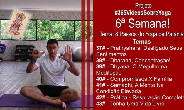 Projeto #365VideosSobreYoga – 6ª Semana Com Os 8 Passos do Yoga De Patañjali