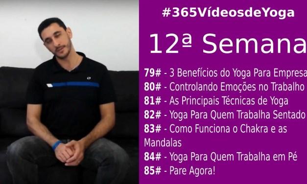 #365VídeosDeYoga – 12ª Semana com Yoga nas Empresas, Chakras, Mandalas e as Técnicas do Yoga