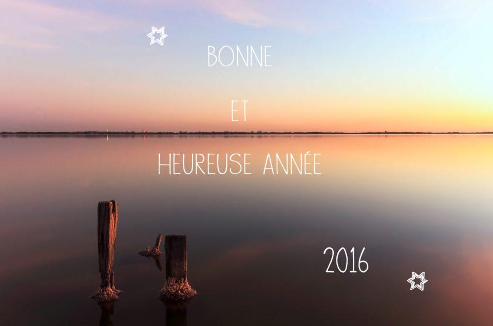 Vidéo du jour – 2015 s'est écoulée