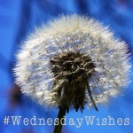 WednesdayWishes