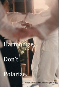 Harmonize, don't polarize