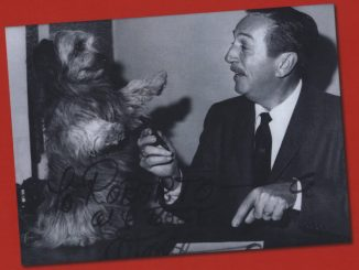 Un comandante alla corte di Walt Disney Valoroso Nunziante Recensioni Libri e News