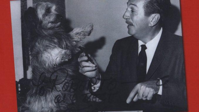 Un comandante alla corte di Walt Disney Valoroso Nunziante