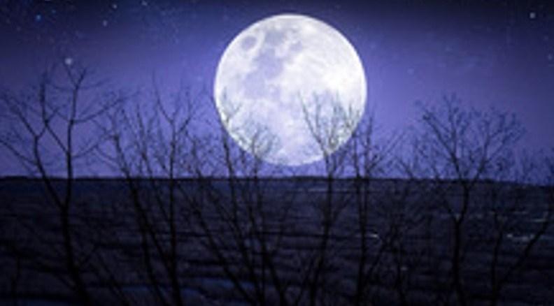 Tutta colpa della luna Recensioni Libri e News