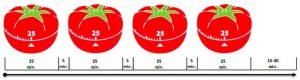 tempi dei pomodori