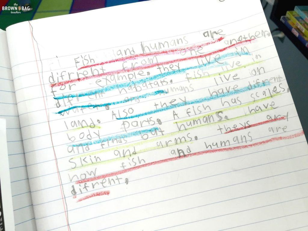 Paragraph Writing In 1st And 2nd Grade Worksheets Samples