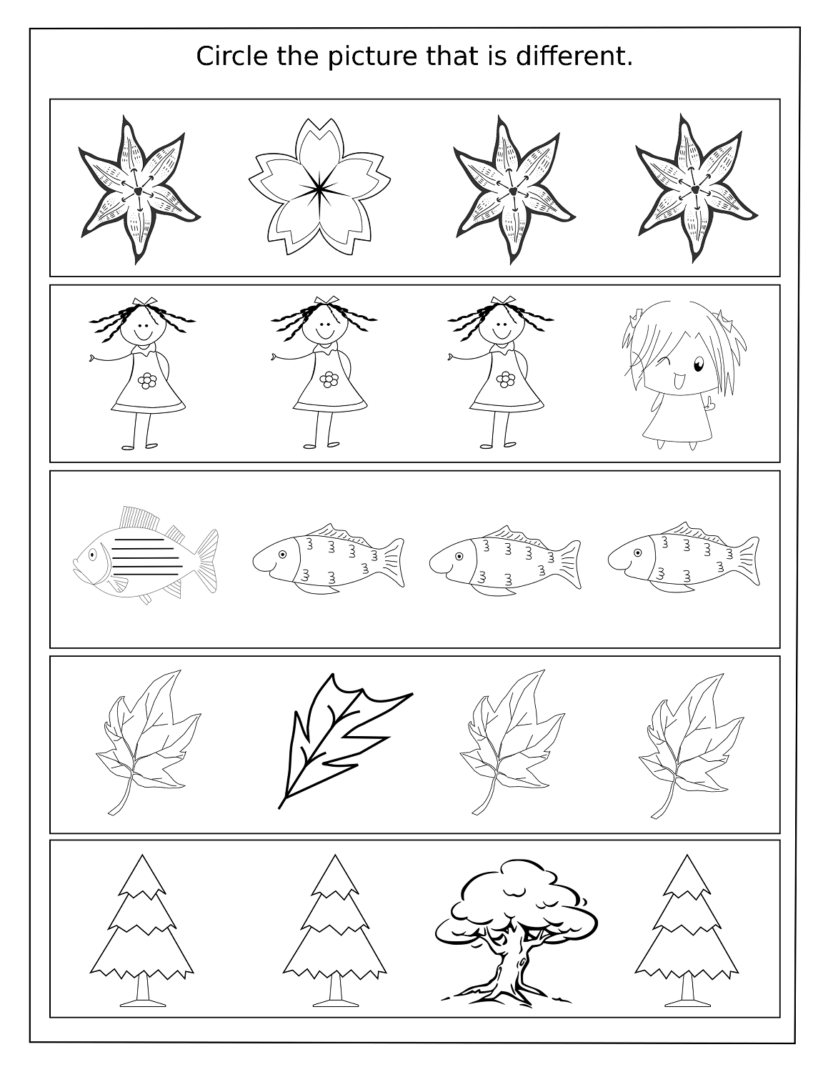 Similar Different Worksheets