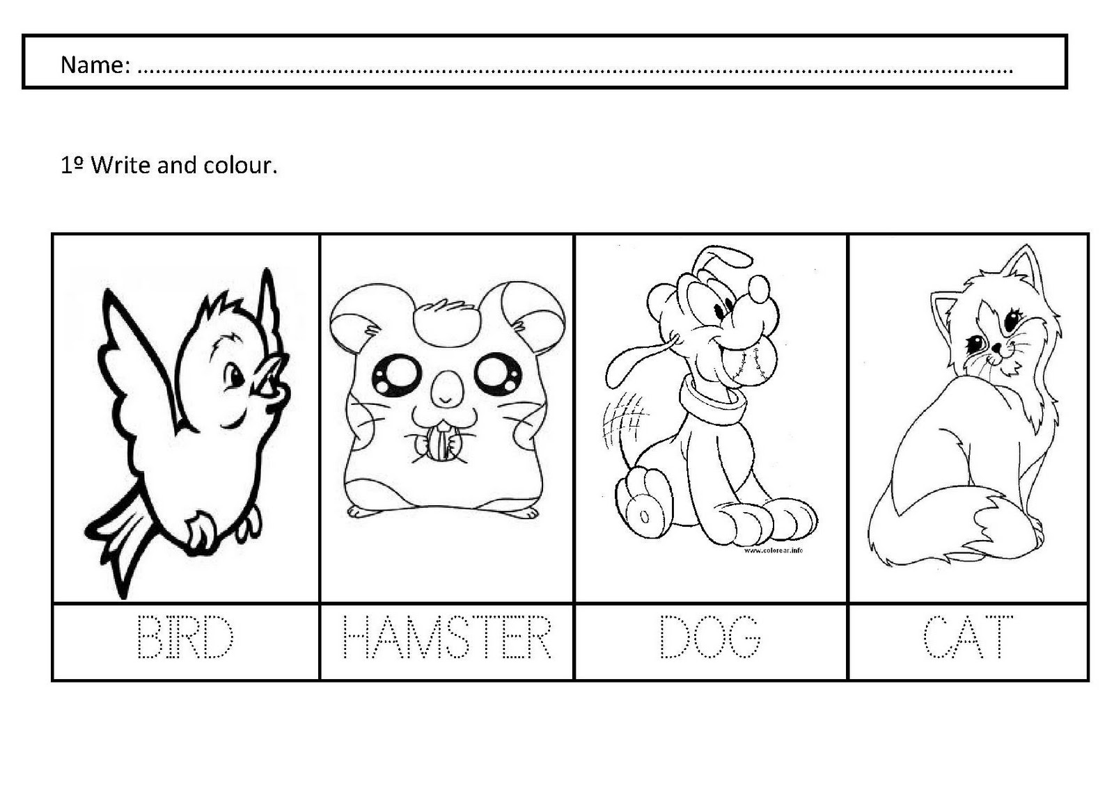 Pet Animal Worksheets