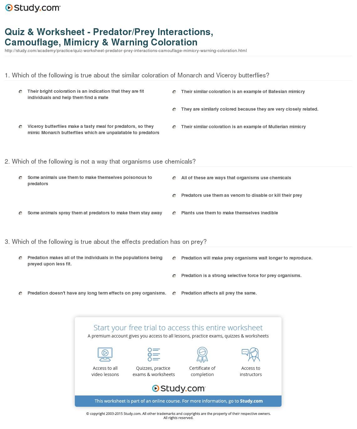 Prey And Predator Worksheets