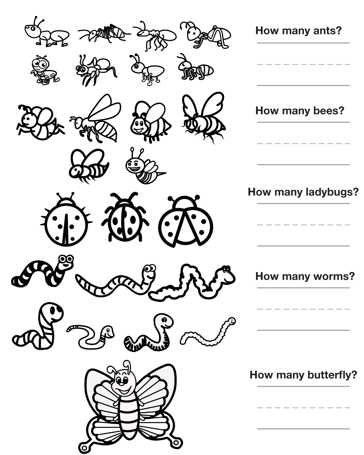 Insect Parts Worksheets