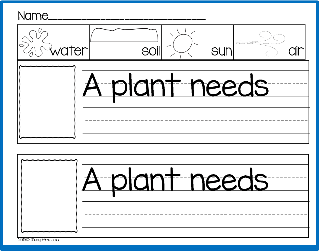 Plant Needs Worksheets Kindergarten