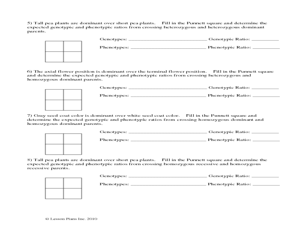 Punnett Square Worksheets 5th Grade