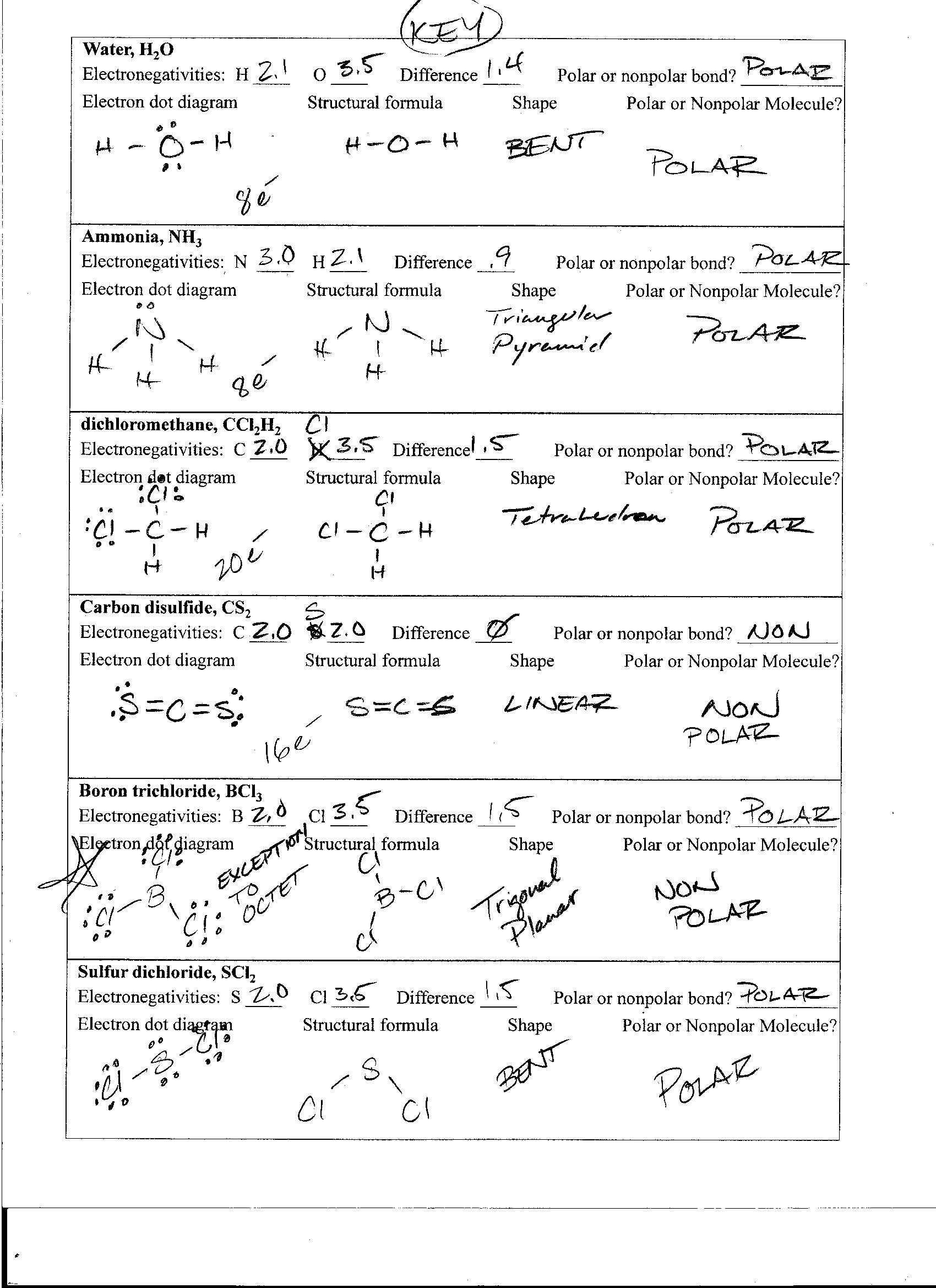 Molecular Polarity Worksheets