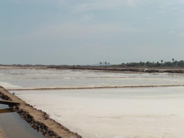 Salinas en Kampot