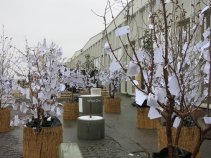 Wishing Trees en Copenhague de Yoko Ono