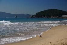 Playa de Haeundae, Busan