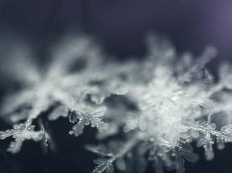 Синоптики прогнозують спокійну зимову погоду найближчими днями