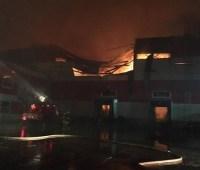 В Воронежской области России ликвидировали масштабный пожар на складе