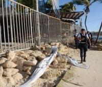 Стрельба на курорте в Мексике, есть погибший