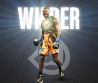 Уайлдер защитил титул чемпиона мира WBC, нокаутировав Бризила в первом раунде