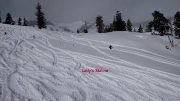 Ladies Slalom (Photo: Andy Wertheim)