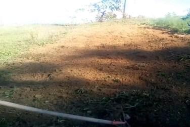 rastrello-orto-fave