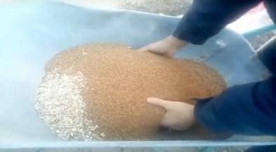 mix cippato-nocciolino per la caldaia a pellet