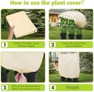 tessuto non tessuto per piante