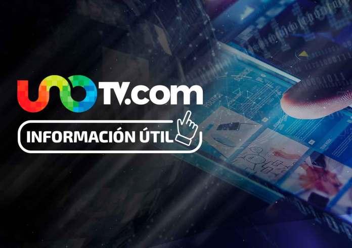 Image result for monterrey hay 2 millones de mascotas abandonadas