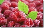 Fresh raspberries, close-up