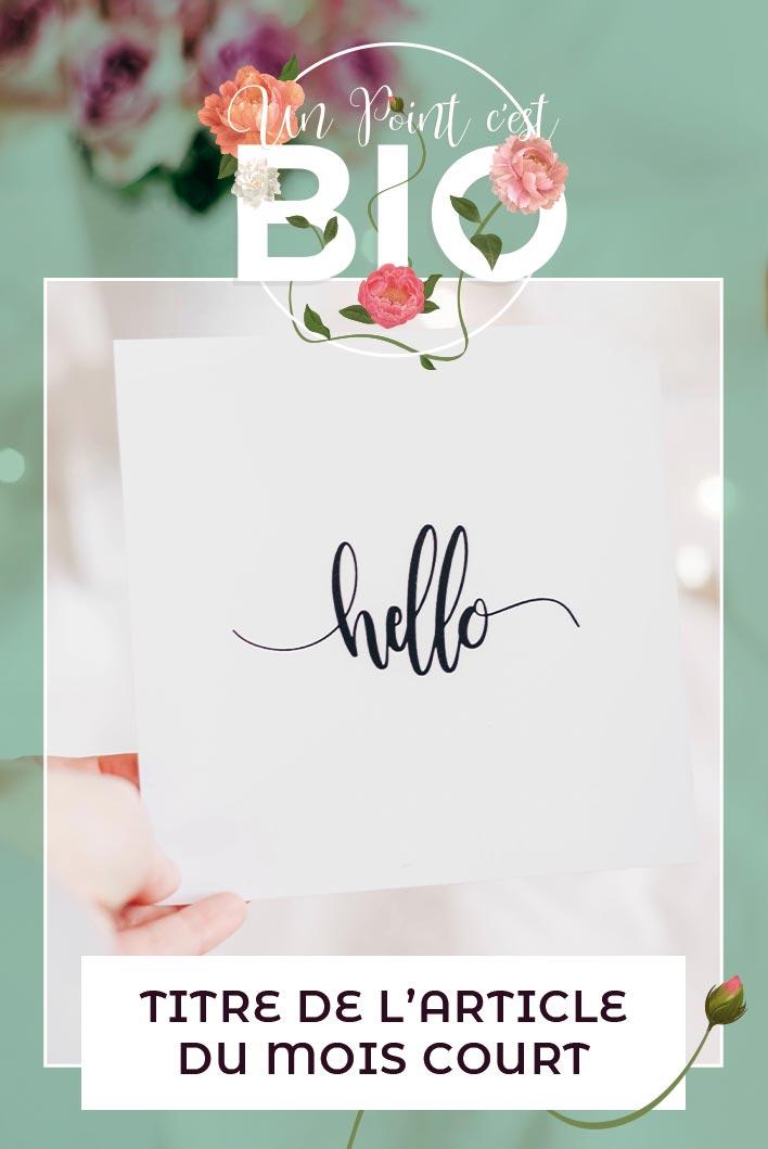 Pinterest Article Blog bienvenue