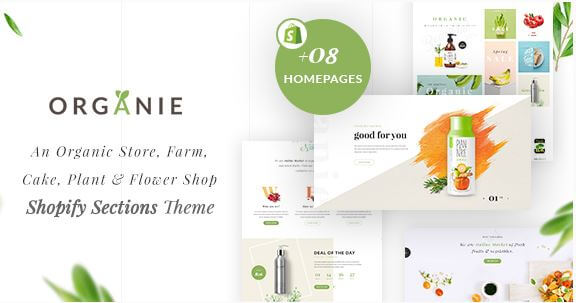 Organie Theme for Food Health and Organic Niche