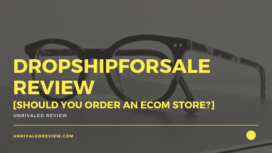 DropshipForSale Review [Should You Order An Ecom Store_]