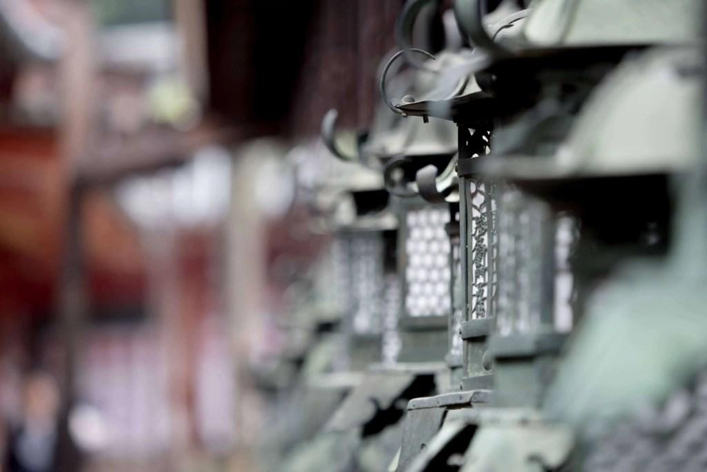 Japon, Nara, daim, temple, Kyoto