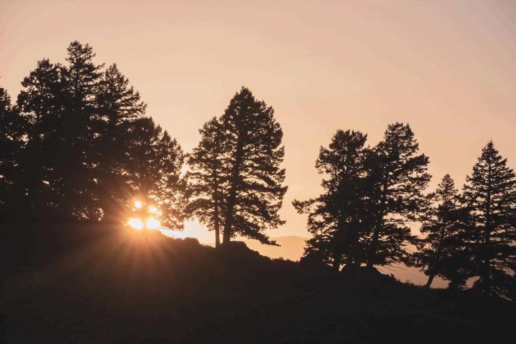 Yellowstone, Grands Parcs, parc national, réserve, nature, USA, Amérique, américain, animaux, roadtrip, visiter, voyage, conseils, rivière,