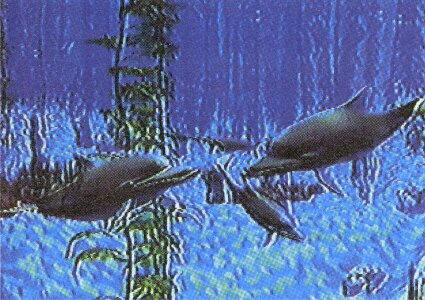 Ecco The Dolphin Saturn Concept Unseen64