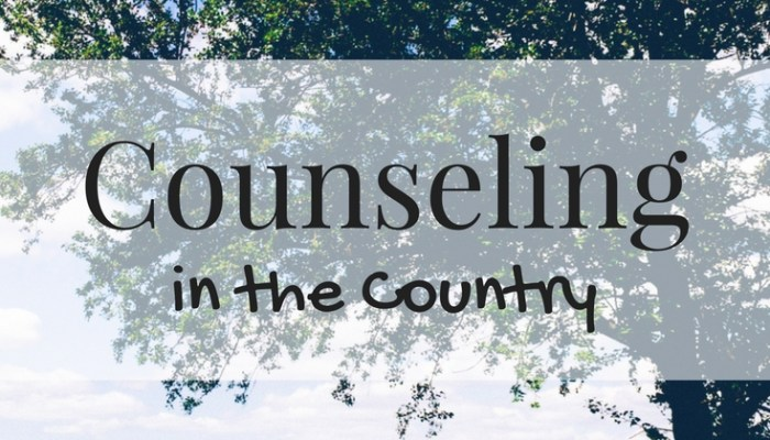 Counseling Ethics in a Rural Community