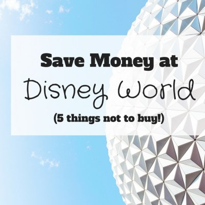 Save Money at Disney World: 5 Things Not to Buy!