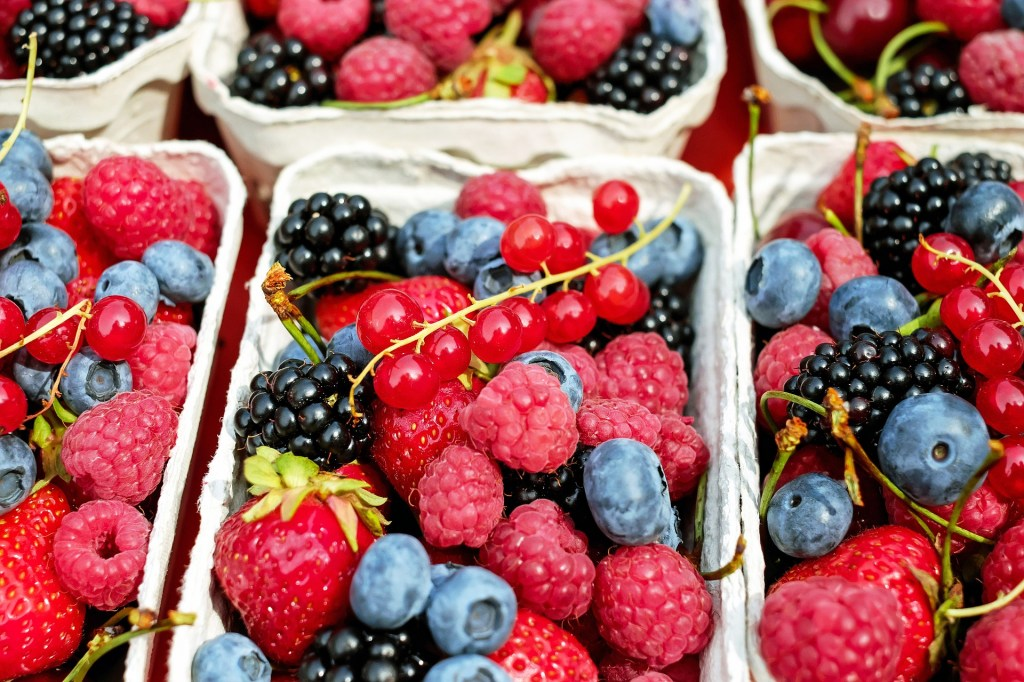 Healthy Fruits- Berries are among the Best.