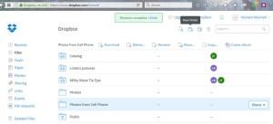 screen shot of dropbox folders