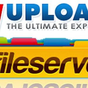 Megaupload : FileServe et Wupload jettent l'éponge et ferment définitivement!