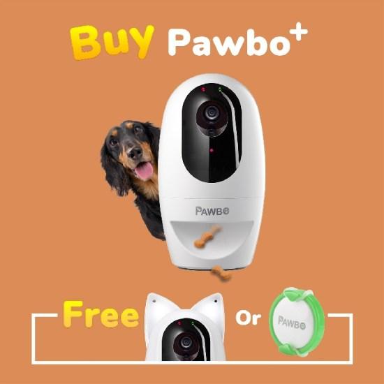 Pawbo+ : une caméra pour surveiller et divertir vos chiens et chats