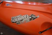 unsponsored_squirrel24