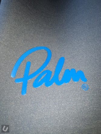 unsponsored-palm-orbit 412