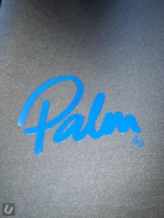 unsponsored-palm-orbit 412