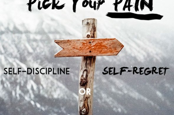 the pain of discipline, the pain of regret