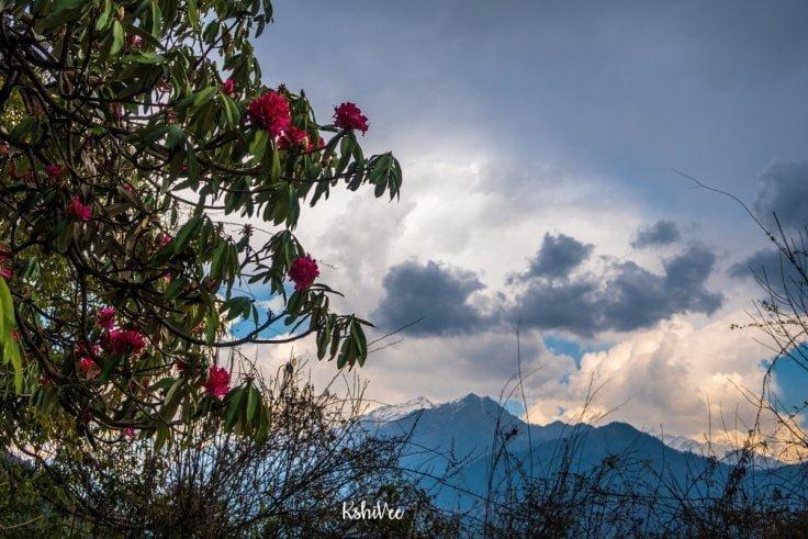 Mountains in Sarmoli